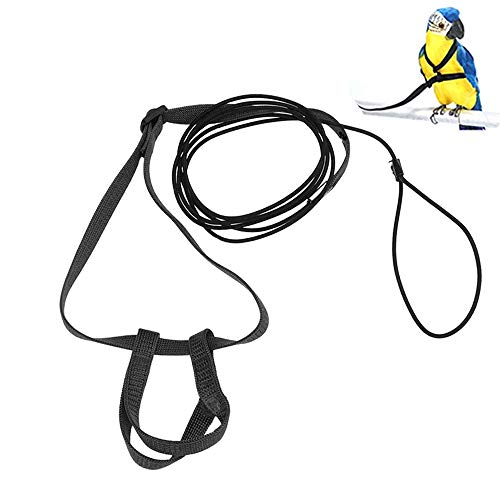 ASOCEA Verstellbares Papageiengeschirr für Wellensittiche, Nylon, Leine für Haustiere, Outdoor, Flugtraining, Anti-Biss-Seil für kleine Nymphensittiche, Myna, kleine Vögel, Schwarz