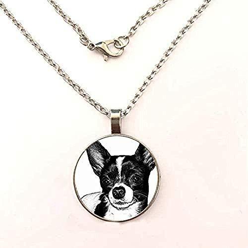 ZPPYMXGZ Co.,ltd Collar de Moda para Mujer, Bonito Collar de Perro Chihuahua, Collar de Plata, cúpula de Cristal, Cadena de Coche, joyería de Dibujos Animados, Collar con Colgante único para Mujer