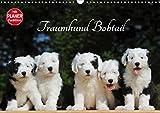 Traumhund Bobtail (Wandkalender 2021 DIN A3 quer)