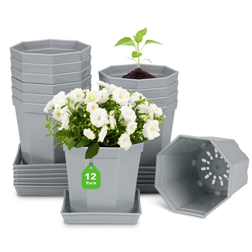 Anzuchttöpfe, kleine Blumentopf Pflanztöpfe Kunststoff Blumentöpfe mit Untersetzer für Blumen und Pflanzen Anzucht Pflanzkübel Pflanztopf 12 Stück (Durchmesser 10cm, Grau)