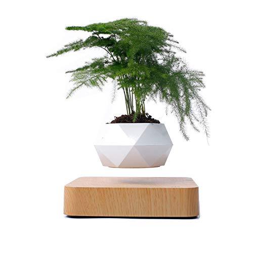 HGCF Magnético levitante Aire Bonsai Pot, Maglev Plantas en Maceta, la suspensión de la Planta en Maceta Floating Flower Pot turística decoración de Temporada decoración del hogar y jardín,1