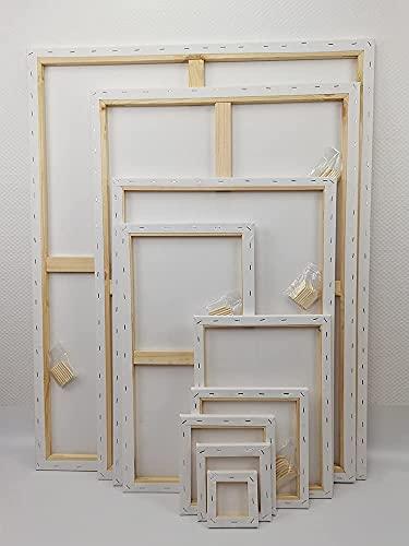 Wandervogel Leinwand auf Keilrahmen aus Baumwolle -380 g/m² von Gr. 10x10 cm bis 79x119 cm (20x30 cm)