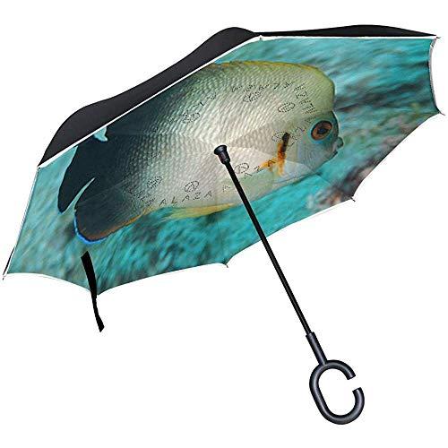 Little Yi Umkehrschirm Pearlscale Angelfish Windproof Anti-UV