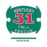 8. BARENBRUG Kentucky 31 Tall Fescue Grass Seed 25 lb.