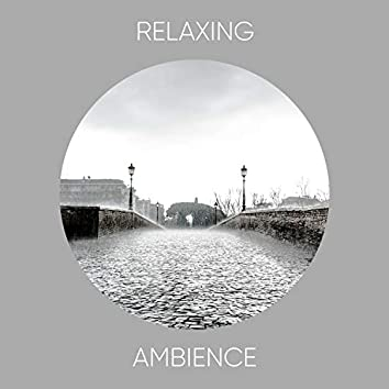 # 1 Album: Relaxing Ambience