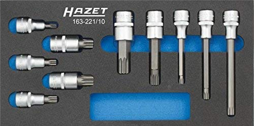 Preisvergleich Produktbild HAZET 163-221 / 10 Schraubendreher-Einsatz-Satz