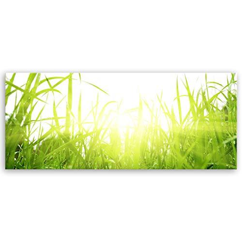 ge Bildet Bilderdepot24 hochwertiges Leinwandbild Panorama - Green Summer - 100 x 40 cm einteilig 1289
