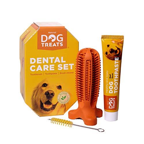 Natural Dog Treats Hundezahnbürste und Zahnpasta mit Rindfleischgeschmack, Hunde Zahnpflege-Set Kauspielzeug, 100% Natürlich Weichem Silikon, Größe Medium
