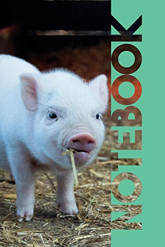 Notebook: Cute Piglet Petite Composition Book for Researching Mini Pigs for Sale Near Me