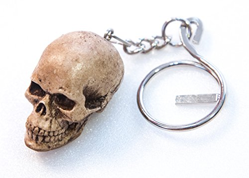 WitnyStore Celtic Skeleton Head Keyring - Miniature Collectibles - Realistic Hand Made and Painted Resin Key Organizer Perfect for Gifts and Souvenirs - 3 x 2 x 1 inches