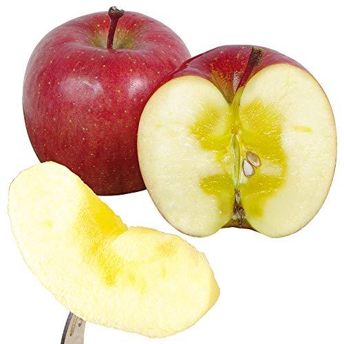 国華園 食品 りんご 山形産 家庭蜜入りふじ 10kg 1箱