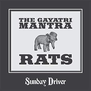 The Gayatri Mantra And Rats