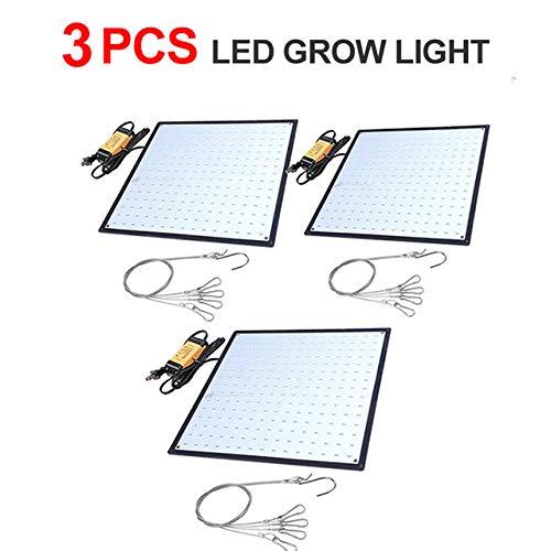 Led Pflanzenlicht, 100 Led Superhelles Tageslicht Vollspektrum Pflanzenzwiebel 3 Led Pflanzenwachstumslichter