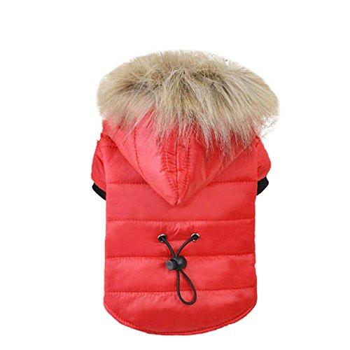 Handfly Mode Hundebekleidung für Kleine Hund Wintermantel/Winterjacke Daunenjacke Hundemantel Hundejacke Hundepullover Sweater Warm Winter für Kleine Hund Rot