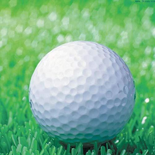 NMYANXU QUELLIA Synthetic Rubber Driving Range Golfbälle, Double Layer Blank Elastic Golfbälle