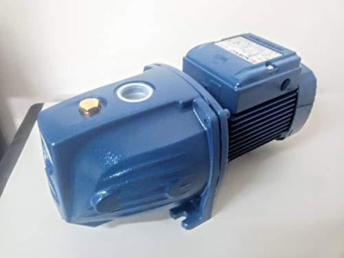 Elettropompa Autoadescante 1Hp JSW m2CX Noryl 220V Pompa Acqua Pedrollo