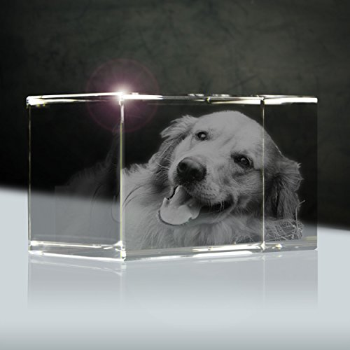 3D Photo Laser in Cristallo (3D)| Dimensioni: 56x35mm (Small) | 1 Persone o Animali