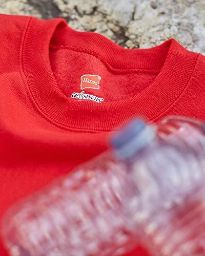 410PjWpwJAL - Hanes Unisex's Sweatshirt
