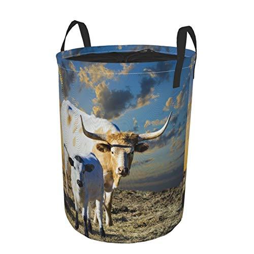 Zusammenklappbar Groß Wäschekorb für den Haushalt,Weibliche Longhorn-Kuh, die in einer Texas-Weide ihr junges Kalb weidet,Lagerplatz Wasserdicht mit Kordelzug,16.5