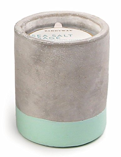 Paddywax Candles Urban Collection Soy Wax Blend Candle in Concrete Jar, Small- 3.5 Ounce, Sea Salt + Sage