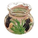 Mini Decor Resin Miniatur-Fisch-Behälter Zubehör Spielzeug für 06.01 12.01 Puppenhaus...