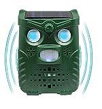N3 ZELEK - Repellente per gatti, design più recente 2020, ricaricabile tramite USB, repellente a ultrasuoni per parassiti, gatti e scarer, deterrente di volpe, repellente da giardino, letto per gatti