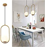 Pendant Lighting Modern Style Chandelier,One Light Kitchen Lamp,Frosted Glass Globe Lampshade Pendant Light Indoor Hanging Light Fixture Adjustable Hanging Fixture for Dinning Room Bedroom