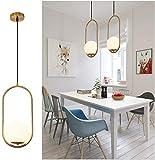 Pendant Lighting Modern Style Chandelier,One Light Kitchen Lamp,Frosted Glass Globe Lampsh...