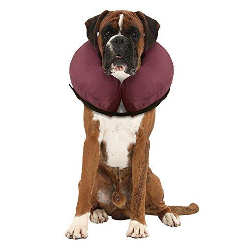 iCollr - Il Collare Gonfiabile - Collare Protettivo per Cani e Gatti nel Recpero Postoperatorio