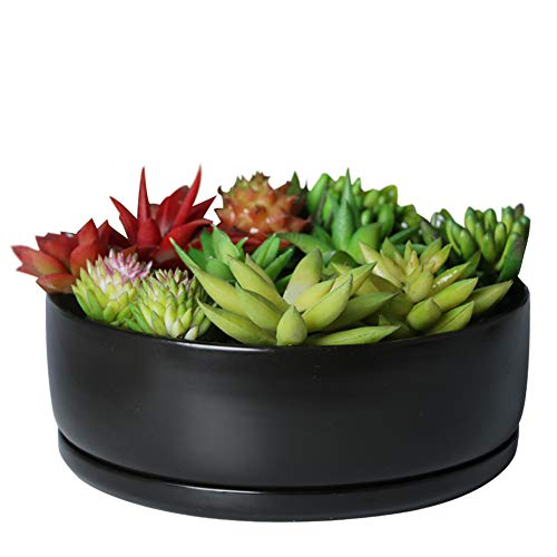 SQOWL 8 Inch Modern Round Flower Pot Black Ceramic Cactus Succulent Planter Bowl with Removable Saucer