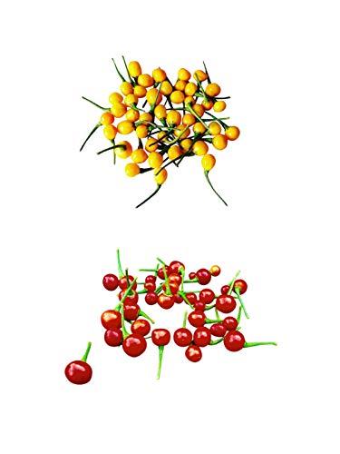 Aji Charapita Sortiment 20 Samen (Rot & Gelb) *Wildchilis aus Peru*