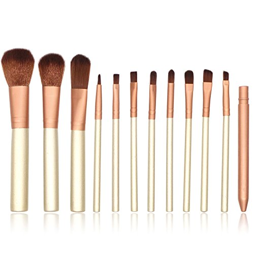 TYJKL Brosse Multifonctions Maquillage Maquillage Brosse Brush Set Brosse cosmétiques Yeux avec Fer boîte 12 en 1 Outils De Maquillage Professionnels