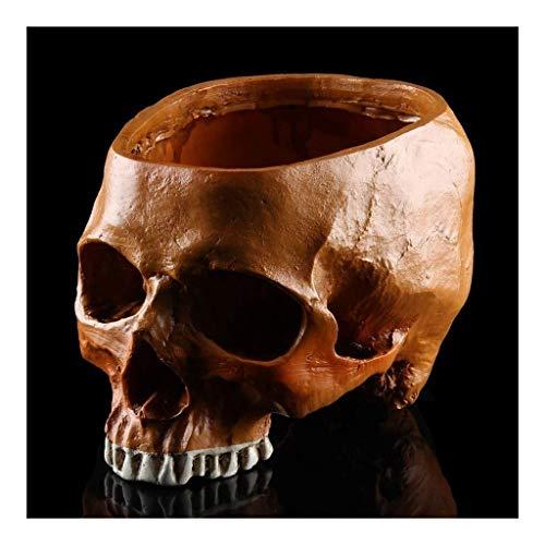 WSHFHDLC Cuenco de la Cultura Popular Estatua de la Taza del cráneo Muerto del cráneo Maceta jardinería Escultura en Honor de los Cuencos Decorativos de portacontenedores Cuenco de la Cultura Popular