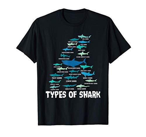 Tipos de tiburón Megalodon Great White...
