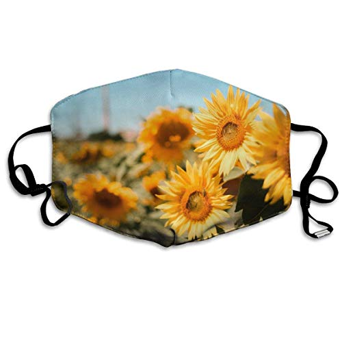 Dustproof Washable Reusable Bookshelf Background Mouth Cover Mask Warm Windproof Mask(10 reusable filters)