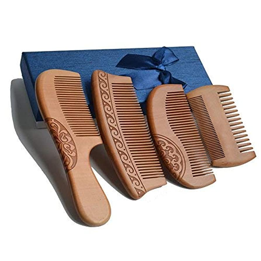 バズ量どうやら4Pcs Wooden Hair Comb No Static Hair Detangler Detangling Comb with Premium Gift Box [並行輸入品]