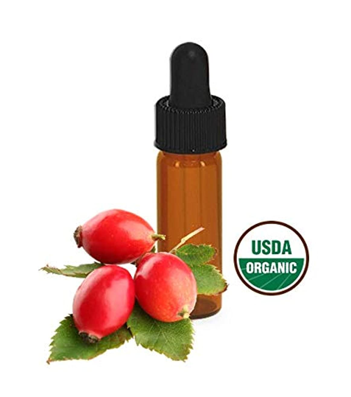 Certified Organic Raw Vegan Cruelty-free Rosehip Chamomile Face Serum Sample
