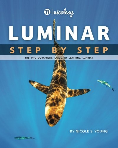 Price comparison product image Luminar: Step by Step: The Photographer's Guide to Learning Luminar