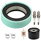 Wellsking 692519 Air Filter with Oil Fuel Filter for V-Twin Vanguard Engines 541477 542477 543477 356477 358777 380447 380777 381447