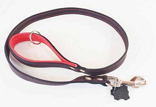 Echt-Leder Hundeleine 1m kurz Führleine Übungsleine für mittelgroße und große Hunde 2 cm breit zweifarbig Schlaufe gepolstert mit weichem Nappaleder robuste Premiuim Qualität MADE IN GERMANY