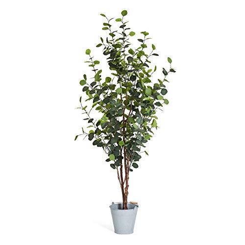 4Ever Green Künstliche Große Grüne Eukalyptus Silber Dollar Eucalyptus Baum Kunstpflanze Kunstblume Kunstbaum Zimmerpflanze im Plastik Topf, 180 cm Hoch