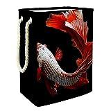 Yumansis Cesto de Ropa Plegable con Soportes Desmontables Carpa Roja Goldfish Cesta organizadora para contenedores de Juguetes, cestas de Regalo, Ropa, vivero 60L