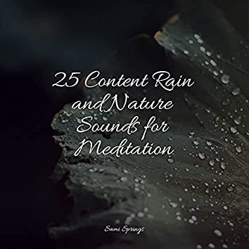 25 Content Rain and Nature Sounds for Meditation