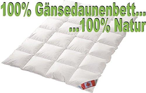 Schäfer Ganzjahres Kassettenstegbett Polaris Premium canadische Daunen Daunenbett 100% Natur Gänsedaunenbett (135x200)