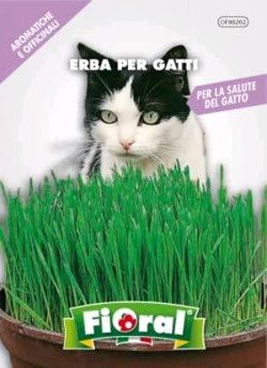 Sementi di piante aromatiche e officinali in bustina ad uso amatoriale (ERBA PER GATTI)