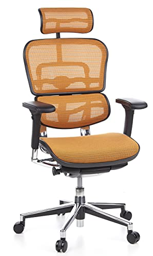 hjh OFFICE 652130 silla de oficina ERGOHUMAN tejido de malla naranja, amplios ajustes, sólido aluminio pulido, ergonómico