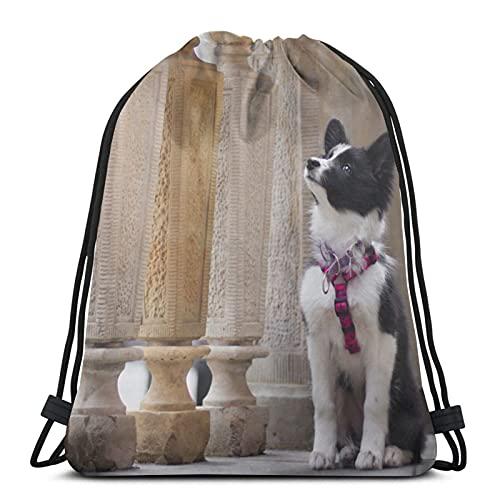 Hunde-Zaun Holzsäulen Schwarz Weiß Unisex Kordelzug Rucksack Tasche Polyester Cinch Sack, Wasserdicht Sport Gym Bag Casual Daypack für Frauen