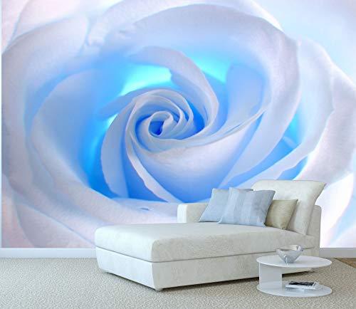 Papel Pintado Rosa Blanca Luz Azul - Fotomurales Flores XXL 256 x 366