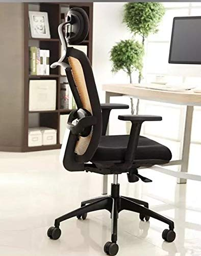 GARDENOLOGY Ergonomics High Back Home Office Chairs | Adjustable Armrest Headrest | Metal Chrome Legs | Ortho Lumbar Cushion Support | Tilt Lock | Imported Mesh Back and Mesh Seat Cover
