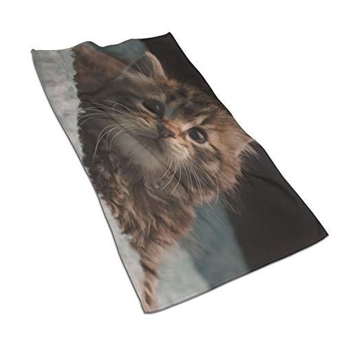Toallas de baño de algodón súper suave, de secado rápido, de alta absorción, de alta calidad, para piscinas, cocinas de hotel (30,5 x 60,5 cm)